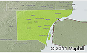 Physical 3D Map of Wayne County, semi-desaturated