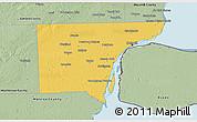 Savanna Style 3D Map of Wayne County