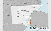 Gray Map of Wayne County