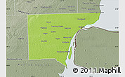 Physical Map of Wayne County, semi-desaturated