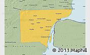 Savanna Style Map of Wayne County