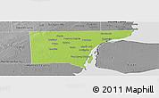 Physical Panoramic Map of Wayne County, desaturated