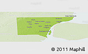 Physical Panoramic Map of Wayne County, lighten