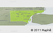 Physical Panoramic Map of Wayne County, semi-desaturated