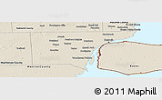 Shaded Relief Panoramic Map of Wayne County