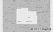 Gray Map of Cedar County