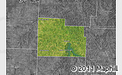 Satellite Map of Cedar County, desaturated