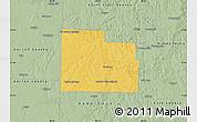 Savanna Style Map of Cedar County
