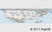 Gray Panoramic Map of United States