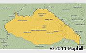 Savanna Style 3D Map of ARTIGAS