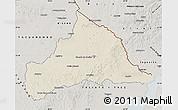 Shaded Relief Map of CERRO LARGO, semi-desaturated