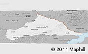 Gray Panoramic Map of CERRO LARGO