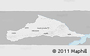 Gray Panoramic Map of CERRO LARGO, single color outside