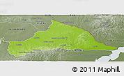 Physical Panoramic Map of CERRO LARGO, semi-desaturated