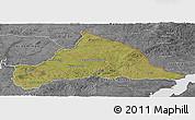 Satellite Panoramic Map of CERRO LARGO, desaturated
