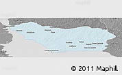 Political Panoramic Map of COLONIA, desaturated