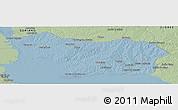 Savanna Style Panoramic Map of COLONIA
