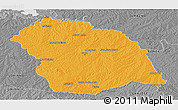 Political Panoramic Map of FLORES, desaturated