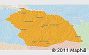 Political Panoramic Map of FLORES, lighten
