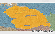 Political Panoramic Map of FLORES, semi-desaturated