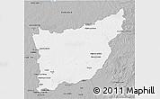 Gray 3D Map of FLORIDA
