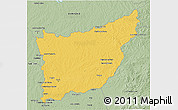 Savanna Style 3D Map of FLORIDA