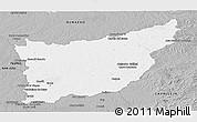 Gray Panoramic Map of FLORIDA