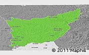 Political Panoramic Map of FLORIDA, desaturated