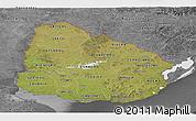 Satellite Panoramic Map of Uruguay, desaturated
