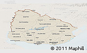 Shaded Relief Panoramic Map of Uruguay, lighten