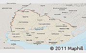 Shaded Relief Panoramic Map of Uruguay, semi-desaturated, land only