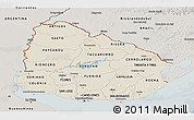 Shaded Relief Panoramic Map of Uruguay, semi-desaturated
