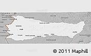 Gray Panoramic Map of PAYSANDU