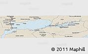 Classic Style Panoramic Map of Rio Negro