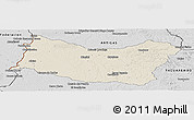 Shaded Relief Panoramic Map of SALTO, desaturated