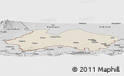 Shaded Relief Panoramic Map of Fergana, desaturated
