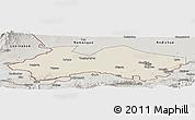 Shaded Relief Panoramic Map of Fergana, semi-desaturated