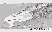 Gray Panoramic Map of Tashkent Oblast