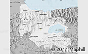 Gray Map of Carabobo
