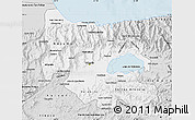 Silver Style Map of Carabobo