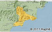 Savanna Style 3D Map of Tuy Phong