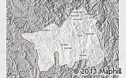 Gray Map of Muong Lay