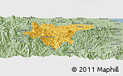 Savanna Style Panoramic Map of Tra My