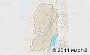 Shaded Relief 3D Map of West Bank, lighten