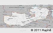 Gray Panoramic Map of Zambia