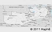 Silver Style Panoramic Map of Zambia